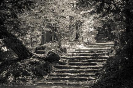 Staircase, Vienna 2013